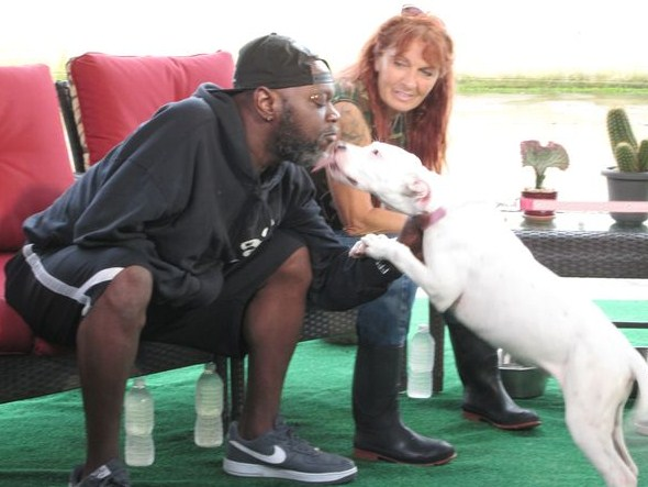 Animal Planet Pitbulls Adoption 1