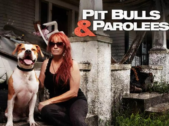 Animal Planet Pitbulls and Parolees 1
