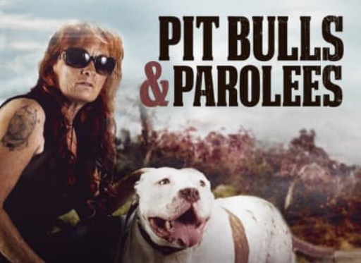 Animal Planet Pitbulls and Parolees
