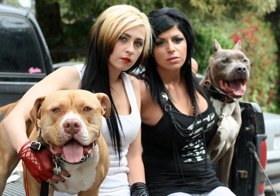 Pitbulls and Parolees TV Show