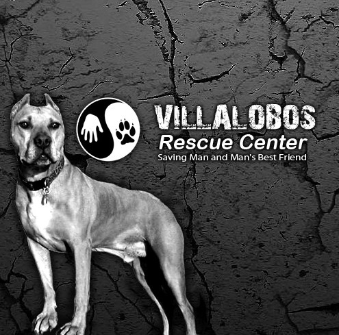 Villalobos Pitbull Rescue
