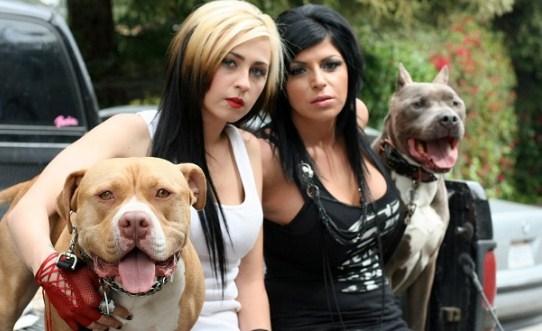 Pit Bulls and Parolees Cast Member Death