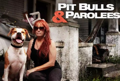 Pitbull and Parolees in New Orleans Location