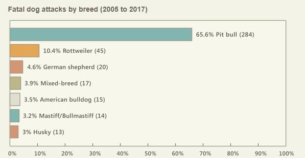 Truth About Pit Bulls Statistics