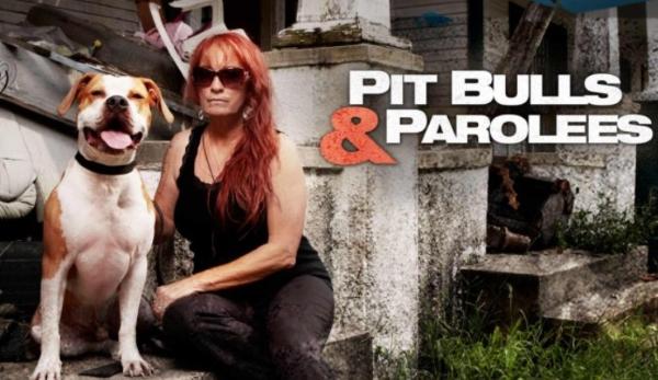Pitbulls and Parolees 2021 Cast