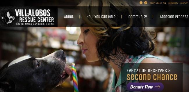 Villalobos Pitbull Rescue Center Website