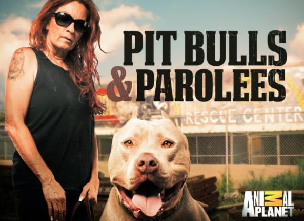 Pitbulls and Parolees: What Season Did Villalobos Move to New Orleans