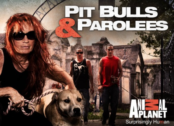 About Pit Bulls and Parolees and Villalobos Rescue Center (VRC)