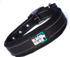 Best Badass Pitbull Collars