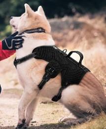 Didog Multi Use Dog Harness
