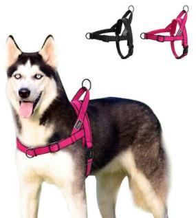 Didog Padded Dog Harness