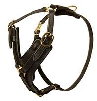 Exclusive Luxury Handcrafted Padded Leather Dog Harness1