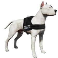 LovinPet Dog Harness