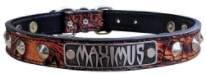 Nu3 - 1 Name Plate Cone Studded Leather Collar