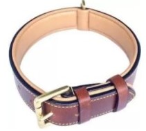 Soft Touch Leather Padded Collar1