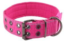 Yunleparks Highly Reflective Dog Collar