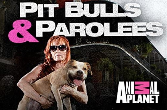 How Many Episodes Are in Season 8 of Pitbulls and Parolees