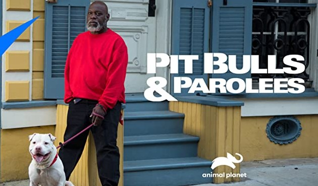 How to Watch Pitbulls and Parolees Without Cable