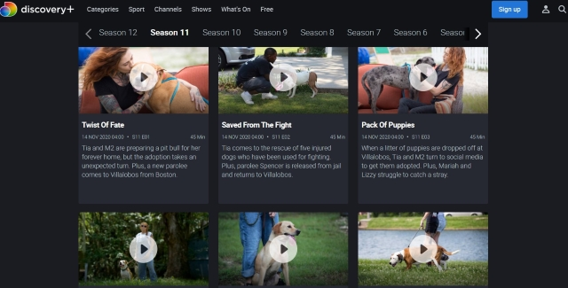 Is Pitbulls and Parolees Available on Discovery Plus