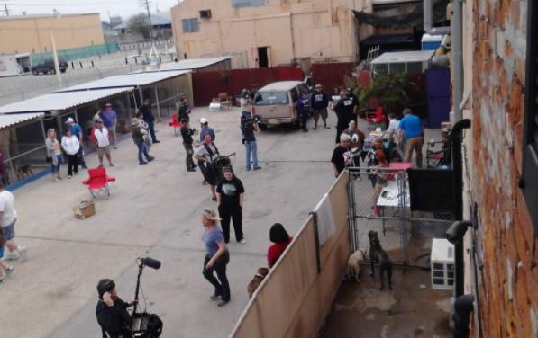 Is the Villalobos Rescue Center Still in Operation1