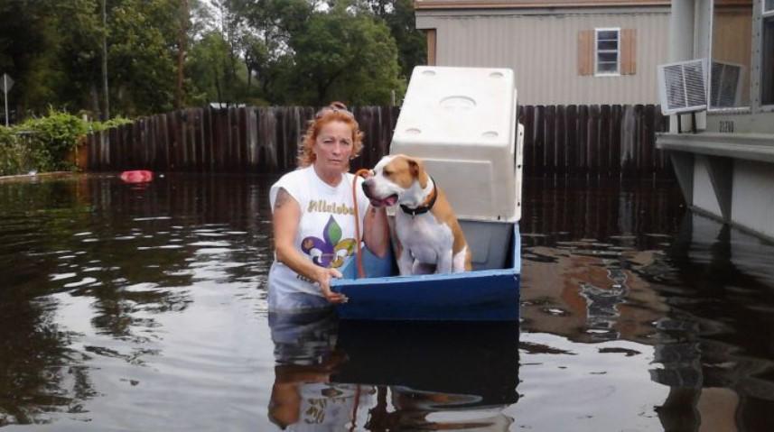 Pitbulls and Parolees Villalobos Hurricane Ida