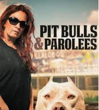 Why Many People Ask Where is Pitbulls and Parolees Located Now?