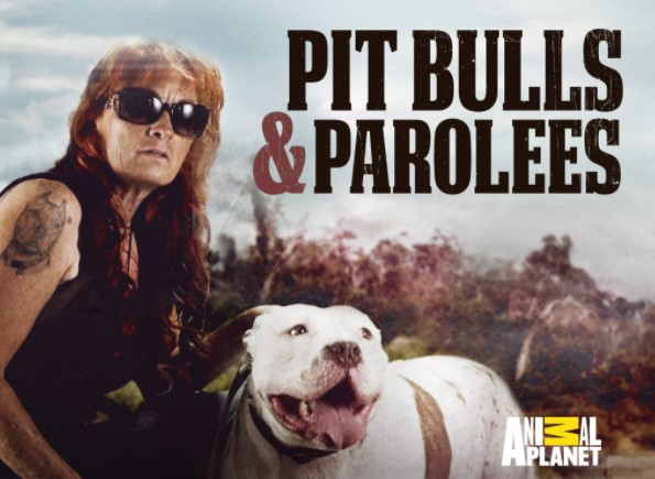 What Channel is Pitbulls and Parolees on DirecTV